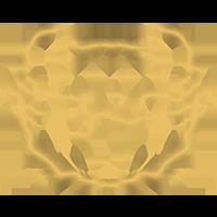 Logo vppk