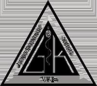 Logo vub